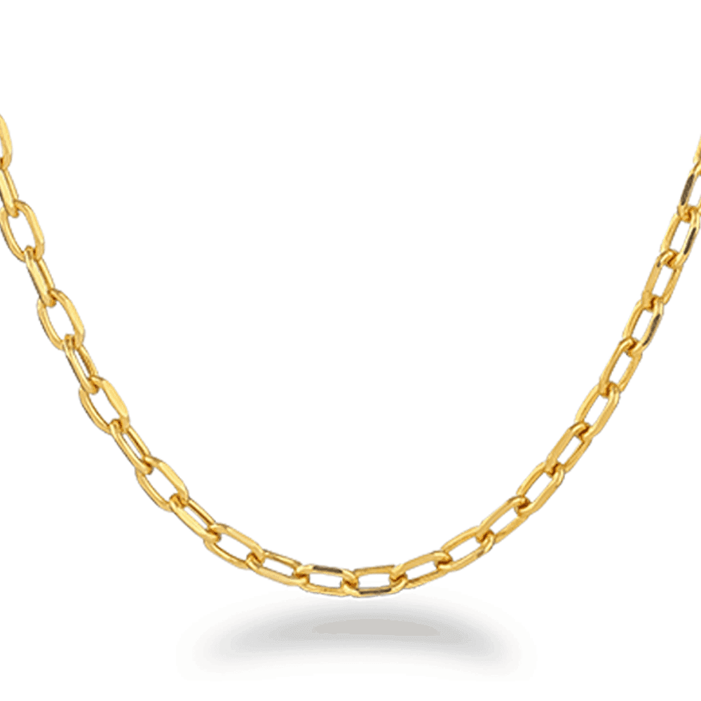 27034 - 22ct Gold Curb Chain 22 Inches
